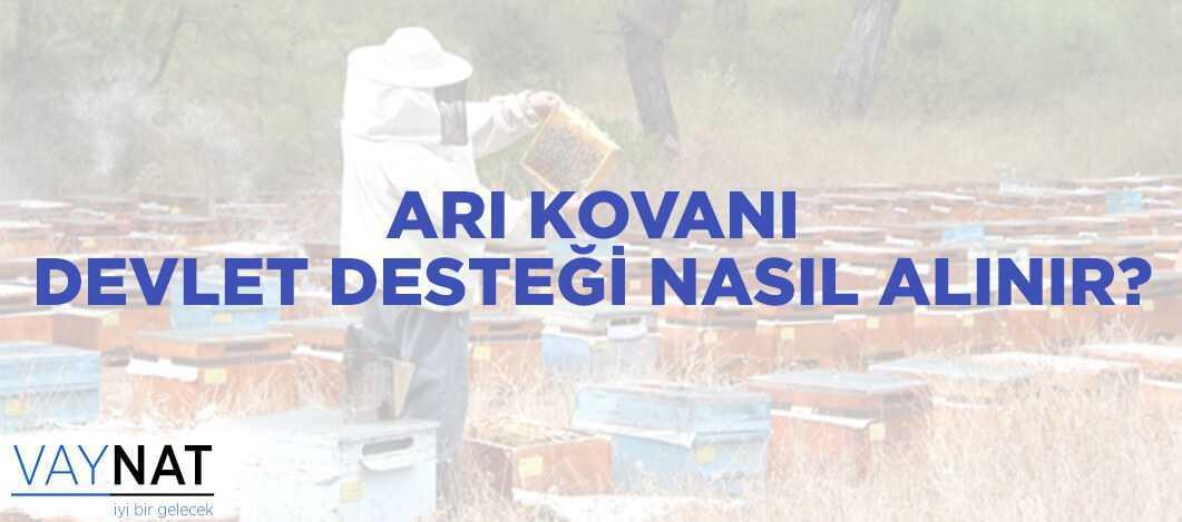 Arı Kovanı Devlet Desteği