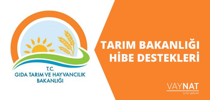 Tarım Bakanlığı Hibe Destekleri