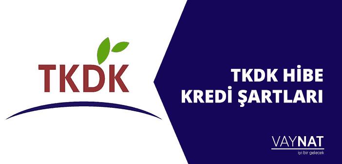 Photo of TKDK Hibe Kredi Şartları Nelerdir?