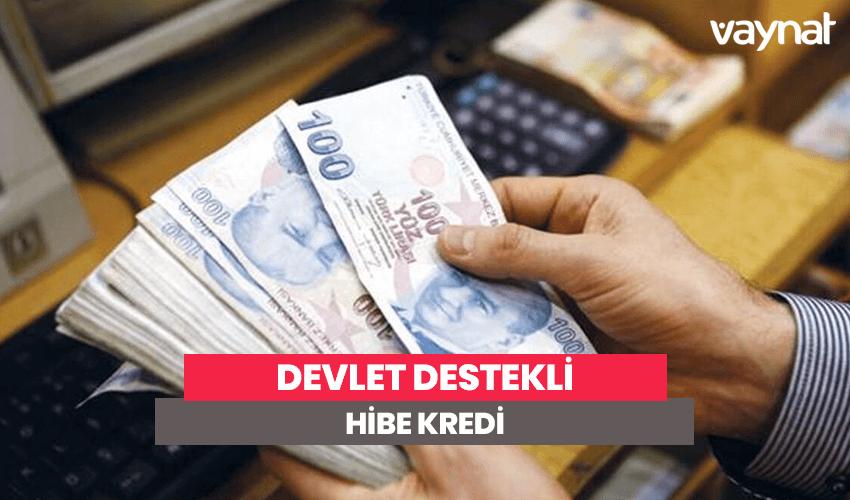 Photo of Devlet Destekli Hibe Kredi 2020