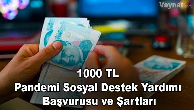 Photo of 1000 TL Pandemi Sosyal Destek Yardım Başvurusu